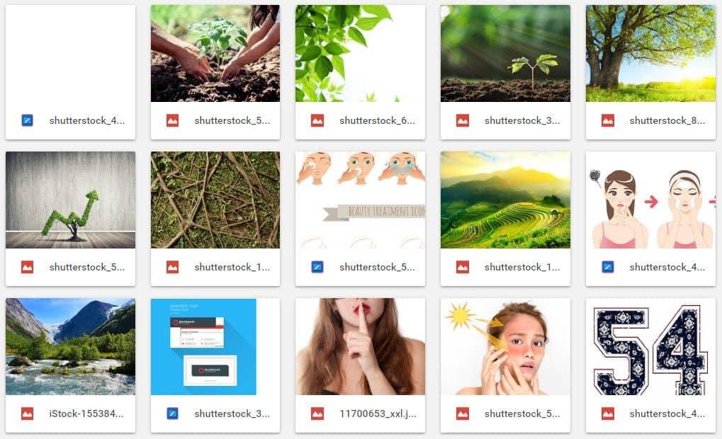 100 Ảnh Shutterstock Free #1