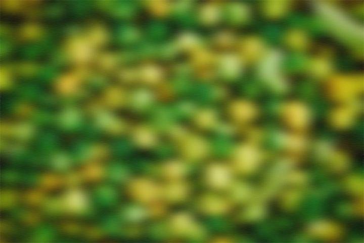 300 Blur Backgrounds