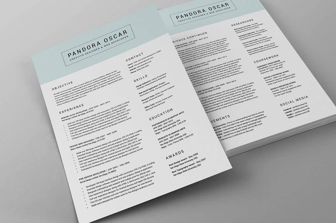 Clean Resume CV