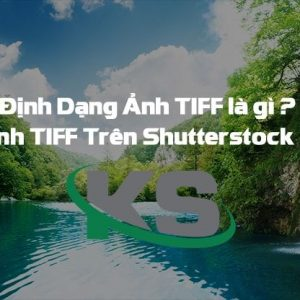 Hinh Anh Tiff Mua Anh Tiff Tren Shutterstock The Nao 2 1
