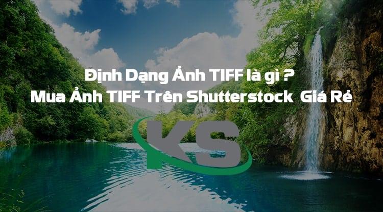 Hình ảnh TIFF là gì và mua ảnh TIFF trên Shutterstock thế nào
