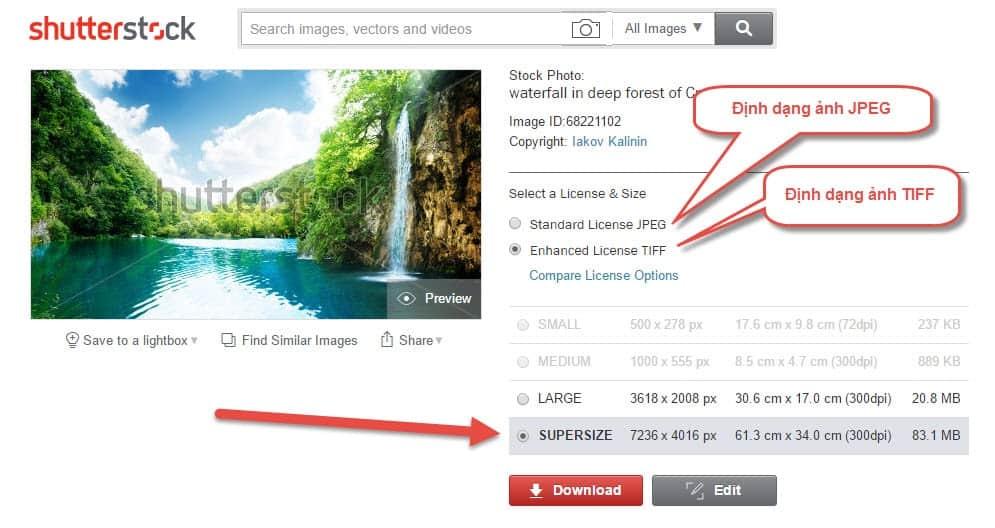 Mua ảnh TIFF trên Shutterstock thế nào
