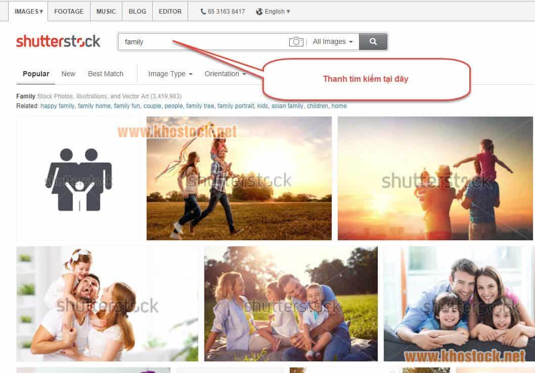 Huong Dan Tim Anh Tren Shutterstock 1 1