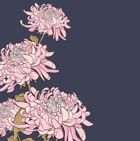 4 Vector Hoa Cuc 1