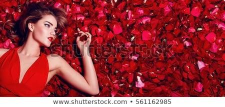 200 ngàn hình ảnh hoa hồng Valentine chất lượng cao tuyệt đẹp