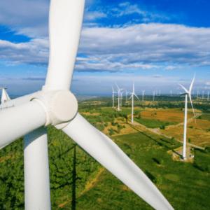 10 hình ảnh quạt xay gió chất lượng cao dùng trong thiết kế in ấn