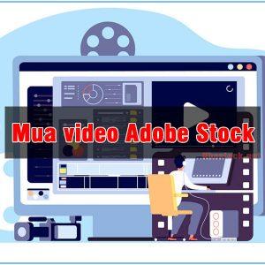 Mua video Adobe Stock chất lượng cao giá rẻ