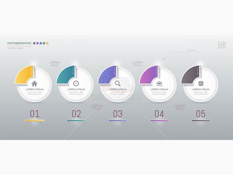 infographic 5 bước dữ liệu Vector - KS607