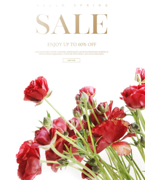 Poster sale off - KS699