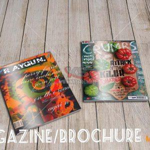 Magazine/Brochure Mockup PSD - KS724