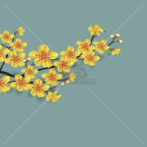 Hoa Mai Vector thiết kế mùa Tết - KS736