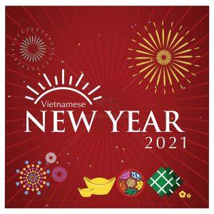 Vector VietNam New Year 2021 - KS883