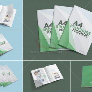 6 Mockup Brochure A4 PSD - KS980