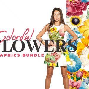 Bộ sưu tập Clipart Hoa đầy màu sắc - KS1026