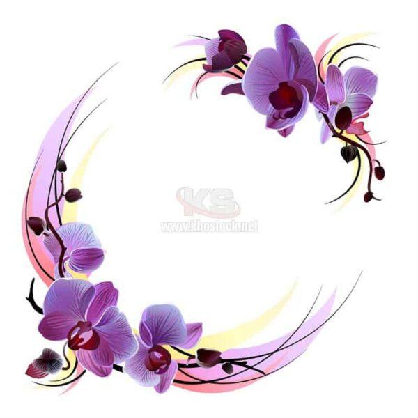 Vector vòng tròn hoa Lan tuyệt đẹp - KS1260