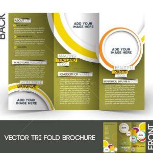 Vector Tri-Fold Brochure tuyệt đẹp gấp 3 - KS1282