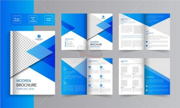 Brochure hiện đại Vector tuyệt đẹp - KS1471